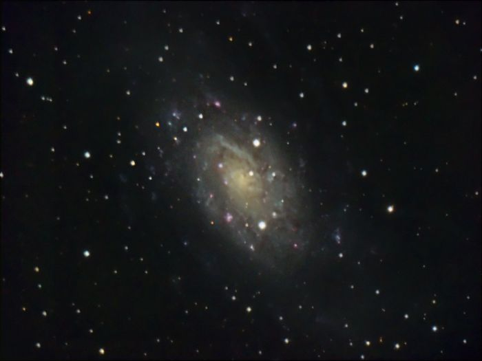 NGC 2403 by Thomas Kerns of Beluga Lake Observaory